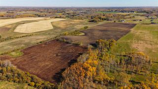 Photo 14: 51114 RGE RD 271: Rural Parkland County Rural Land/Vacant Lot for sale : MLS®# E4216659