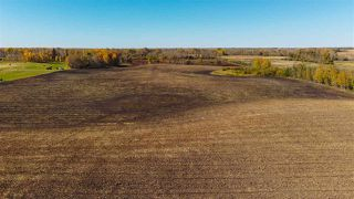 Photo 21: 51114 RGE RD 271: Rural Parkland County Rural Land/Vacant Lot for sale : MLS®# E4216659