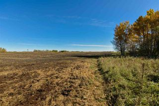 Photo 11: 51114 RGE RD 271: Rural Parkland County Rural Land/Vacant Lot for sale : MLS®# E4216659