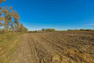 Photo 6: 51114 RGE RD 271: Rural Parkland County Rural Land/Vacant Lot for sale : MLS®# E4216659