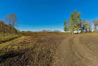Photo 8: 51114 RGE RD 271: Rural Parkland County Rural Land/Vacant Lot for sale : MLS®# E4216659
