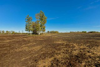 Photo 10: 51114 RGE RD 271: Rural Parkland County Rural Land/Vacant Lot for sale : MLS®# E4216659