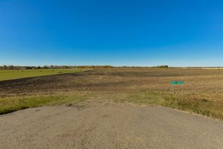 Photo 3: 51114 RGE RD 271: Rural Parkland County Rural Land/Vacant Lot for sale : MLS®# E4216659