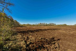Photo 9: 51114 RGE RD 271: Rural Parkland County Rural Land/Vacant Lot for sale : MLS®# E4216659