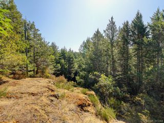 Photo 25: 1030 Malloch Road in VICTORIA: Me Rocky Point Single Family Detached for sale (Metchosin)  : MLS®# 415544