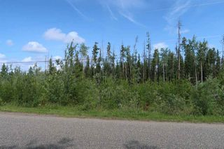 Photo 6: LOT 2 GUEST Road: Cluculz Lake Land for sale (PG Rural West (Zone 77))  : MLS®# R2449861