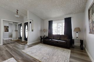Photo 3: 13 EMERALD Terrace: St. Albert House for sale : MLS®# E4198160