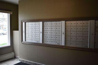 Photo 34: 315 4403 23 Street in Edmonton: Zone 30 Condo for sale : MLS®# E4199717