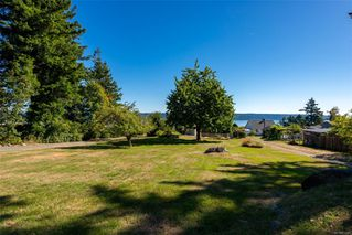 Photo 38: 342 Island Hwy in : CR Campbell River Central House for sale (Campbell River)  : MLS®# 855326
