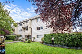 Photo 13: 205 611 Constance Ave in : Es Saxe Point Condo for sale (Esquimalt)  : MLS®# 859111