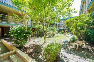 "Photo 2: 109 22277 122 Avenue in Maple Ridge: West Central Condo for sale in ""THE GARDENS"" : MLS®# R2400308"