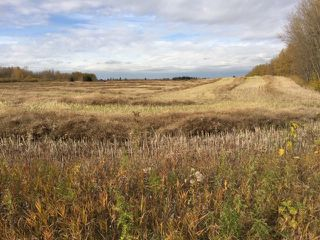 Main Photo: Hwy 14 RR 231: Rural Strathcona County Rural Land/Vacant Lot for sale : MLS®# E4176869