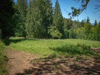 Photo 2: 5775 EXTROM Road in Chilliwack: Ryder Lake Land for sale (Sardis)  : MLS®# R2479747