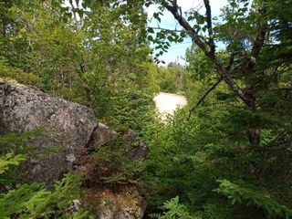 Photo 3: Lot 29-B Seacrest Lane in Northwest Cove: 405-Lunenburg County Vacant Land for sale (South Shore)  : MLS®# 202015336