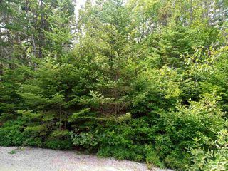 Photo 4: Lot 29-B Seacrest Lane in Northwest Cove: 405-Lunenburg County Vacant Land for sale (South Shore)  : MLS®# 202015336