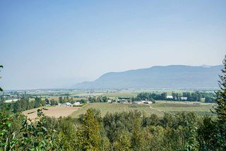 Photo 39: 3757 ELDRIDGE Road in Abbotsford: Sumas Mountain House for sale : MLS®# R2507341