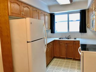 Photo 3: 920 LAKEWOOD Road N in Edmonton: Zone 29 Townhouse for sale : MLS®# E4179664