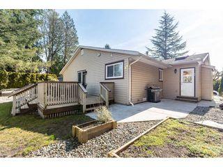Photo 19: 21009 STONEHOUSE Avenue in Maple Ridge: Northwest Maple Ridge House for sale : MLS®# R2447012