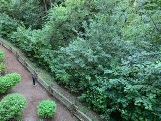 "Photo 25: 205 33328 E BOURQUIN Crescent in Abbotsford: Central Abbotsford Condo for sale in ""Natures Gate"" : MLS®# R2481691"