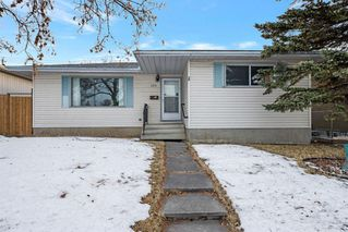 Main Photo: 255 Maitland Crescent NE in Calgary: Marlborough Park Detached for sale : MLS®# A1061446