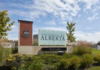 Photo 8: 8727 117 Street in Edmonton: Zone 15 House for sale : MLS®# E4171166