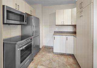Photo 16: 8727 117 Street in Edmonton: Zone 15 House for sale : MLS®# E4171166