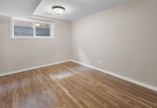 Photo 28: 8727 117 Street in Edmonton: Zone 15 House for sale : MLS®# E4171166