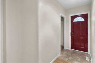 Photo 7: 8727 117 Street in Edmonton: Zone 15 House for sale : MLS®# E4171166