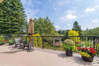 Photo 15: 3658 ARGYLL STREET in Surrey: Central Abbotsford House for sale (Abbotsford)  : MLS®# R2393719