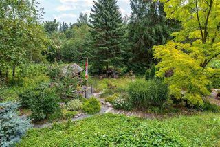 Photo 19: 3658 ARGYLL STREET in Surrey: Central Abbotsford House for sale (Abbotsford)  : MLS®# R2393719