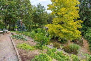 Photo 18: 3658 ARGYLL STREET in Surrey: Central Abbotsford House for sale (Abbotsford)  : MLS®# R2393719