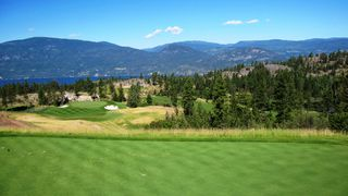 Photo 43: 208 Chicopee Road in Vernon: Predator Ridge House for sale (North Okanagan)  : MLS®# 10187149