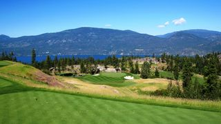 Photo 42: 208 Chicopee Road in Vernon: Predator Ridge House for sale (North Okanagan)  : MLS®# 10187149
