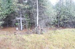 Photo 3: Lt 6&7 Concession 7 Road in Brock: Rural Brock Property for sale : MLS®# N4687950