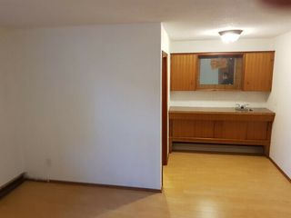 Photo 21: 9106 81 Avenue in Edmonton: Zone 17 House for sale : MLS®# E4201592