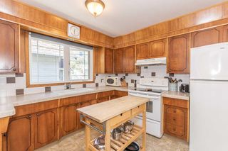 Photo 15: 9106 81 Avenue in Edmonton: Zone 17 House for sale : MLS®# E4201592