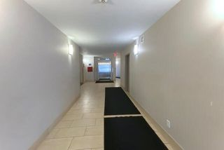 Photo 3: 302 10611 117 Street in Edmonton: Zone 08 Condo for sale : MLS®# E4220121