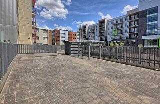 Photo 30: 302 10611 117 Street in Edmonton: Zone 08 Condo for sale : MLS®# E4220121