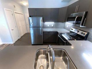 Photo 11: 302 10611 117 Street in Edmonton: Zone 08 Condo for sale : MLS®# E4220121