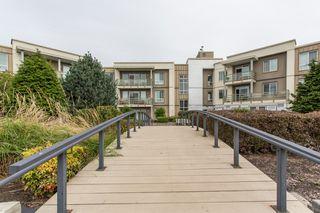 "Photo 16: 323 15850 26 Avenue in Surrey: Grandview Surrey Condo for sale in ""SUMMIT HOUSE"" (South Surrey White Rock)  : MLS®# R2423406"