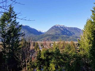 Photo 4: 40202 SKYLINE Drive in Squamish: Garibaldi Highlands House for sale : MLS®# R2423493