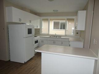Photo 3: 13523 119 Street in Edmonton: House Half Duplex for rent