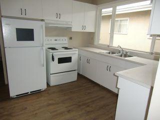 Photo 5: 13523 119 Street in Edmonton: House Half Duplex for rent