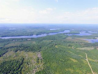 Photo 11: Lots Ohio Road in Upper Ohio: 407-Shelburne County Vacant Land for sale (South Shore)  : MLS®# 201927310