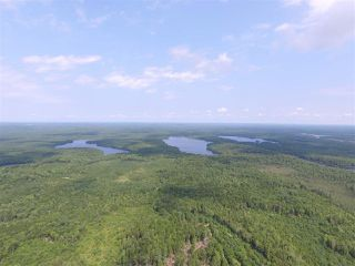 Photo 5: Lots Ohio Road in Upper Ohio: 407-Shelburne County Vacant Land for sale (South Shore)  : MLS®# 201927310