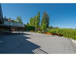 "Photo 28: 4629 216 Street in Langley: Murrayville House for sale in ""Upper Murrayville"" : MLS®# R2433818"