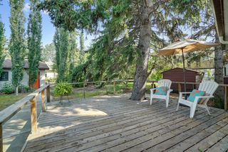 Photo 19: 14014 105 Avenue NW in Edmonton: Glenora House for sale