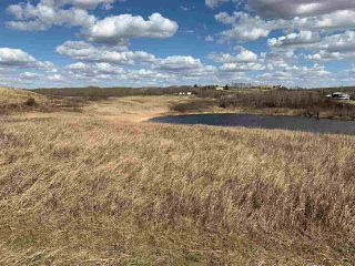 Photo 4: LOT #38 Fish Lake: Rural Flagstaff County Rural Land/Vacant Lot for sale : MLS®# E4194700