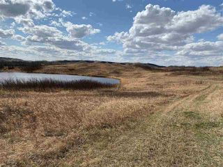 Photo 3: LOT #38 Fish Lake: Rural Flagstaff County Rural Land/Vacant Lot for sale : MLS®# E4194700
