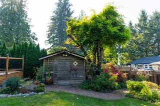 Photo 14: 2321 ST GEORGE Street in Port Moody: Port Moody Centre House for sale : MLS®# R2497458